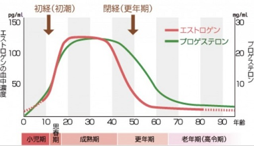 女性ホルモン分泌量の説明図